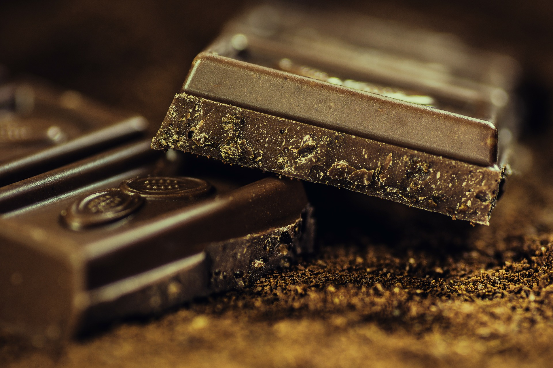 Best Chocolate Making Companies
